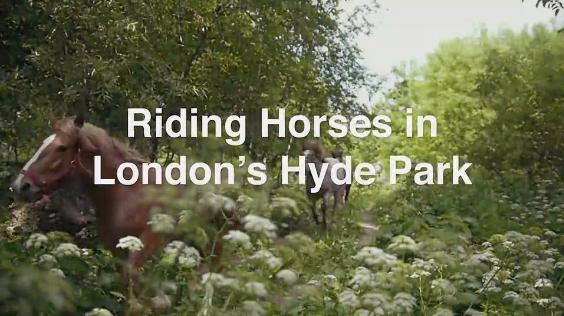 Horseback Riding in London's Hyde Park, Richmond & More
